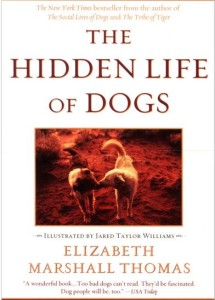 Hidden Life of Dogs